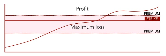 options trading profit and loss